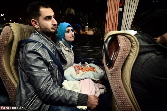 ماجرای متفاوت پناهندگیِ مفید