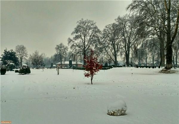 بارش برف سنگین کشمیر را سفیدپوش کرد+تصاویر