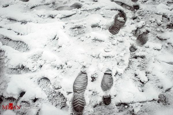 تصاویری زیبا از بارش برف در سنندج