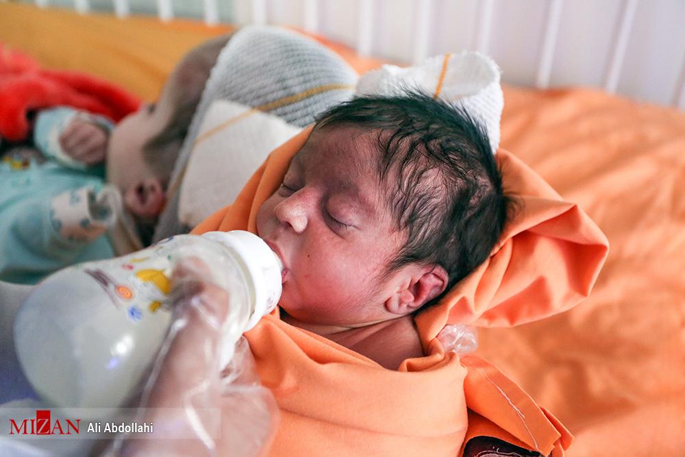 فراخوان سازمان غذا و دارو برای تامین شیرخشک یارانهای مورد نیاز سال آینده