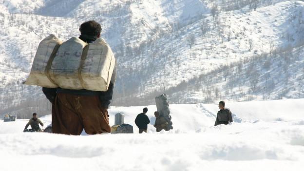 مردم زیر برف جان می دهند؛ مدعیان امید سرشان مثل کبک زیر برف است