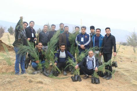 کاشت نهال در کوهدشت