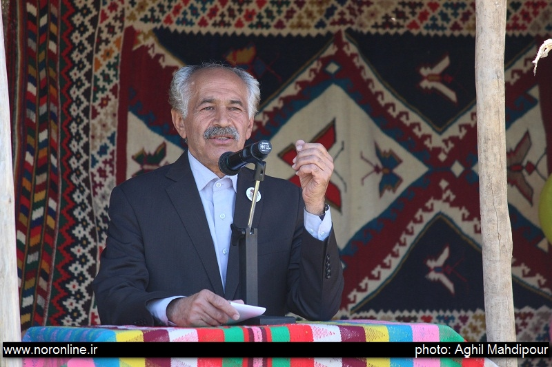 رهام پیکری جشنواره بلوط
