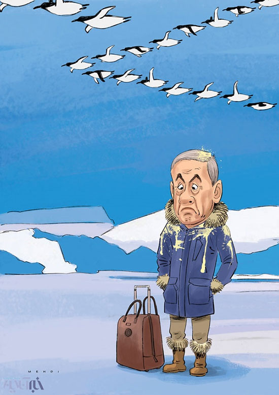 کاریکاتور: اولین واکنش پنگوئن ها به نتانیاهو!