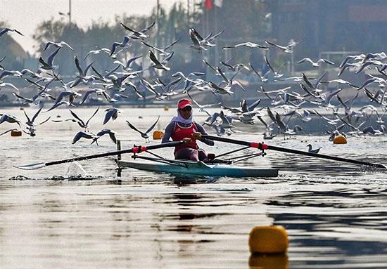 رحمانی: پاروی ما در دریاچه آزادی به کف زمین می خورد!