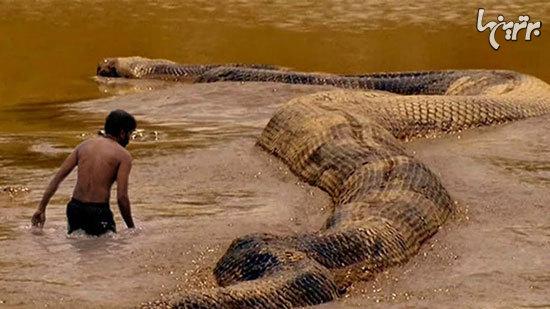 ترسناکترین موجودات غول پیکری که تا به حال دیده شده اند