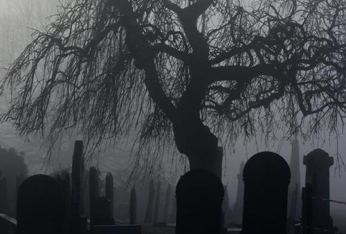 و اگر مرگ نبود...