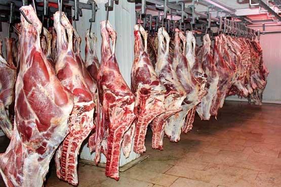 آلودگی به سرب؛ از هوا تا غذا/ گوشت گاو عامل ابتلا به ۱۶ بیماری/ ترفندهای علمی برای خوابی راحت