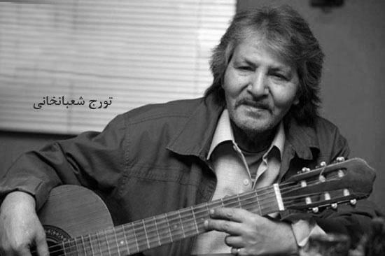 از حیثیت موسیقی داخل ایران دفاع کنیم