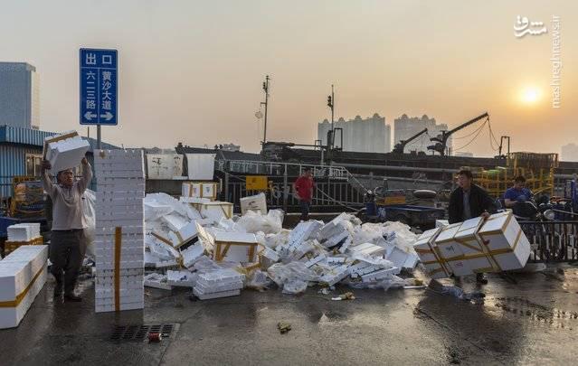 انبار غذاهای دریایی گوانگژو در چین