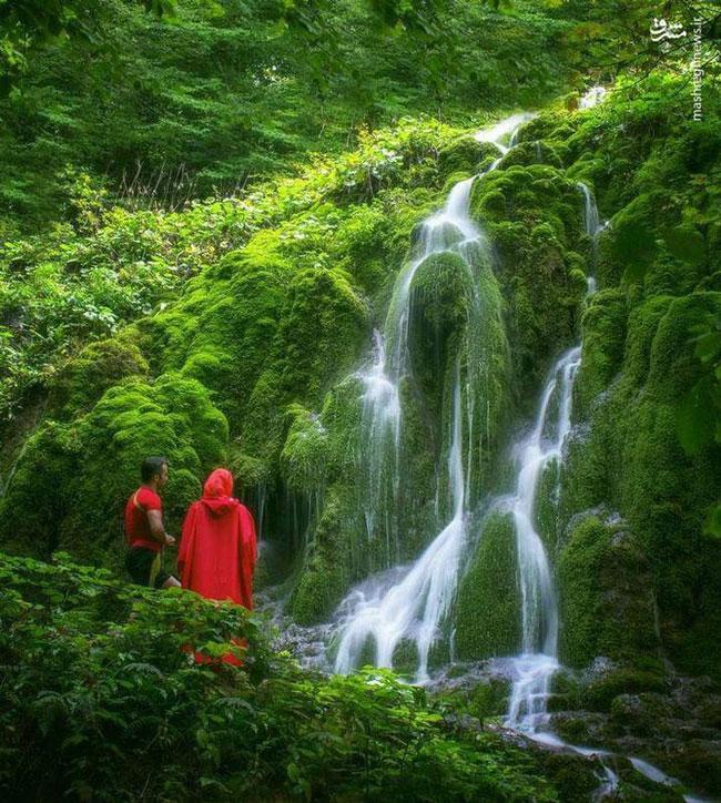 آبشار تمام خزه ای بولا در ایران