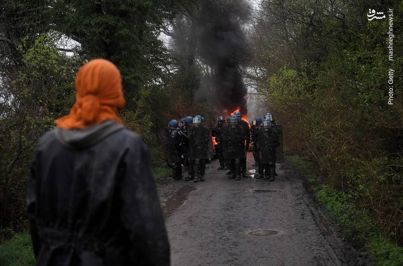 تصویر دیگری از یک فرانسوی که در برابر احداث فرودگاه در منطقه جنگلی مقاومت میکند.
