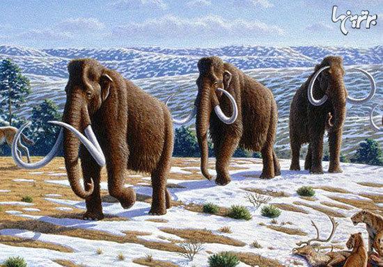 گونههای جانوری منقرض شدهای که به لطف فناوریهای نوین امکان دارد دو مرتبه زنده شوند