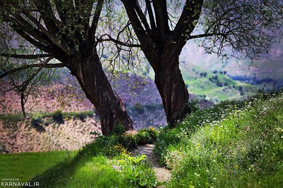 دشت آزو در دماوند؛ رویایی زیبا پای البرز