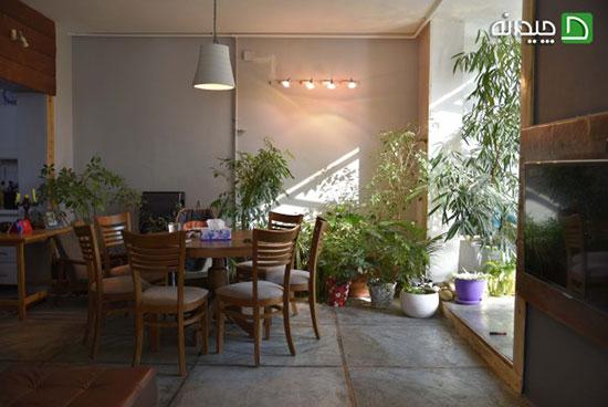 طراحی داخلی خانه با تم طبیعت، منزل خانواده سه نفره شیرازی!