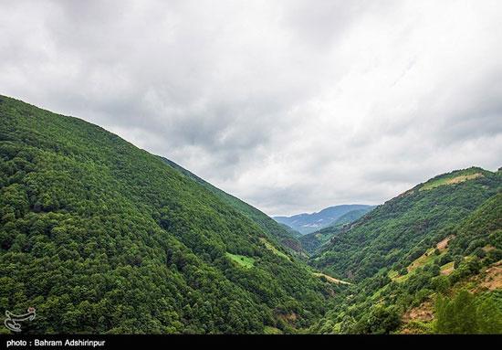 طبیعت مِشه سویی در دامنه کوه اسپیناس