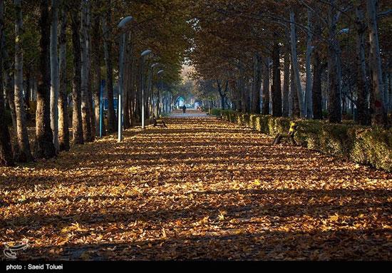 طبیعت پاییزی در خراسان شمالی