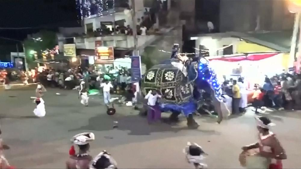 لحظه وحشتناک فرار فیل حین اجرای رژه خیابانی+ فیلم//