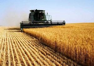 اختصاص بیش از یک هزار میلیارد ریال اعتبار به بخش کشاورزی