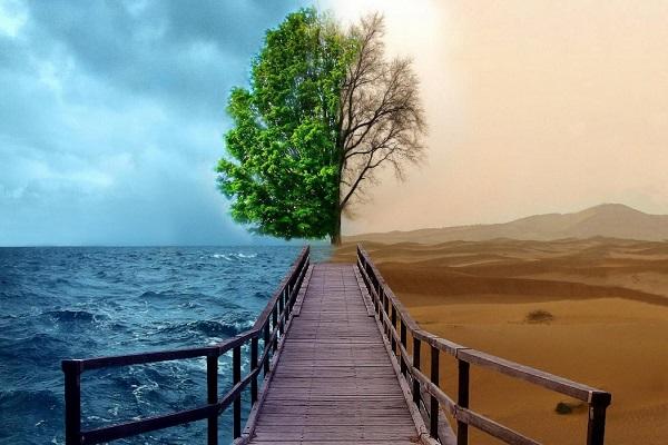 نهجالبلاغه، نرمافزار راهبردی اصلاح حیات بشر است/ ماهیت علم حقیقی از منظر قرآن