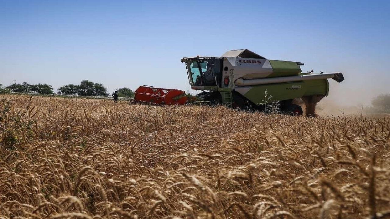 سال ۹۸ سالی پر برکت برای بخش کشاورزی بود