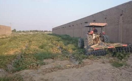 تخریب مزرعه صیفی جات فاضلابی در حصار سرخ